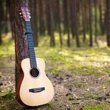 guitar-in-forest-2